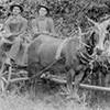 Sloan wagon