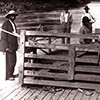 Wood's Ferry